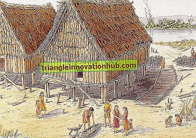 Verbreitung der Kulturpflanzen während der prähistorischen Periode - Landwirtschaft