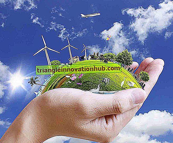 Vikten av naturressurser av planeten jorden - miljø