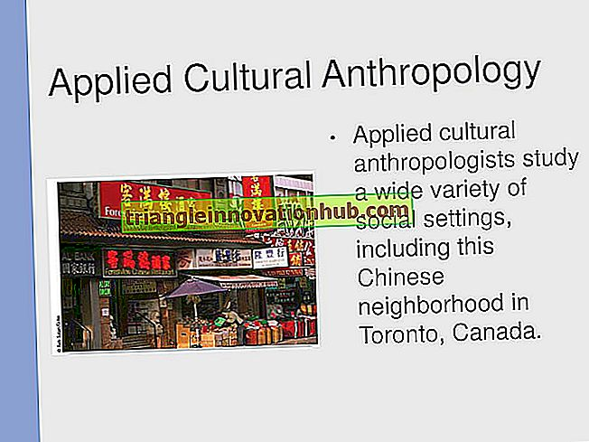 Anvendt antropologi: Essay on Applied Anthropology