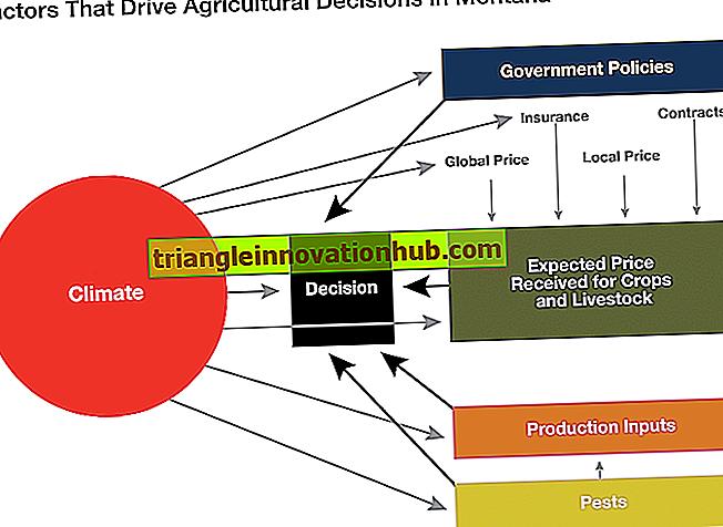 Top 5 factoren die de gewasproductie beïnvloeden - aardrijkskunde