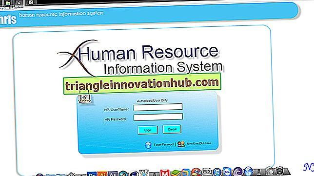 Human Resource Information System (HRIS) - Udvikling af menneskelige ressourcer