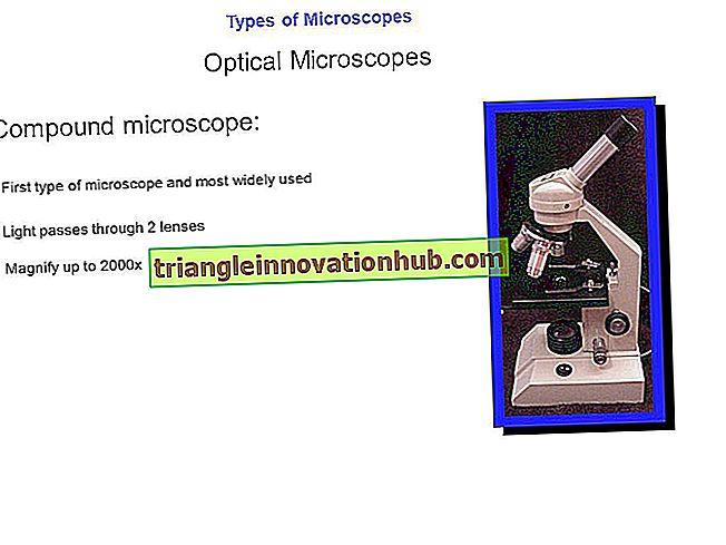 Typer af mikroskop: optisk og elektronmikroskop (med figur) - mikrobiologi