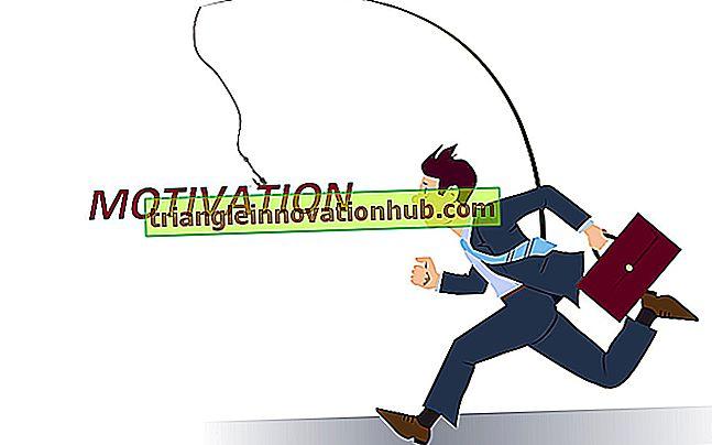 Pieniężne i niepieniężne czynniki motywacji